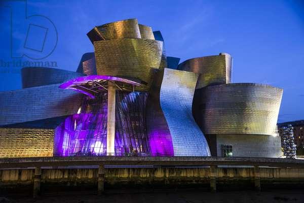 Guggenheim Museum / Bilbao
