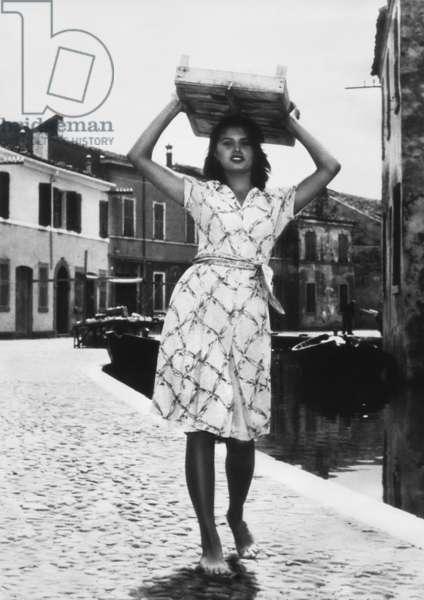 Sofia Loren, La donna del fiume, IT 1954, by Mario Soldati