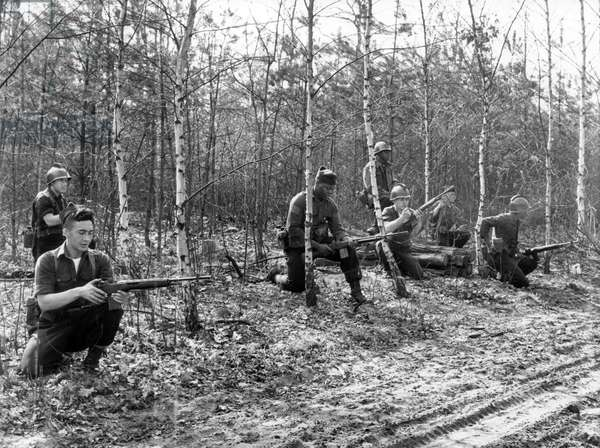 Manoeuvre of allied troops in Grunewald in Berlin