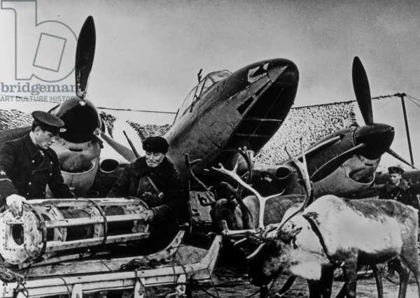 Sovietics and Laps, 1941