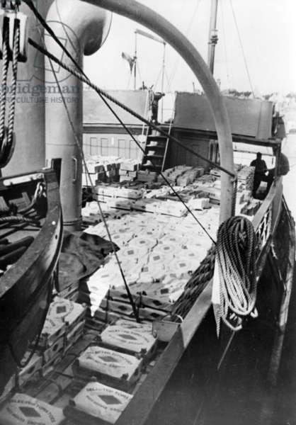 WW II - English Channel Guernsey 1940