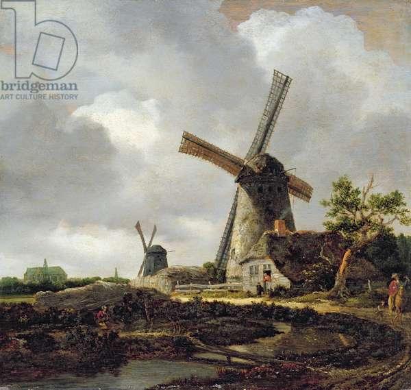 Landscape with Windmills, near Haarlem, c.1650-52 (oil on panel)
