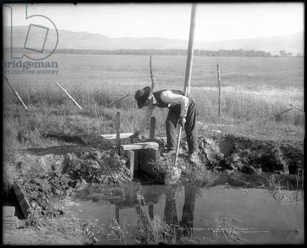 Irrigating in Routt County, c.1908-15 (b/w photo)