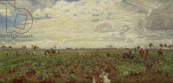 Fieldworkers, Holland, 1880s (oil on canvas)