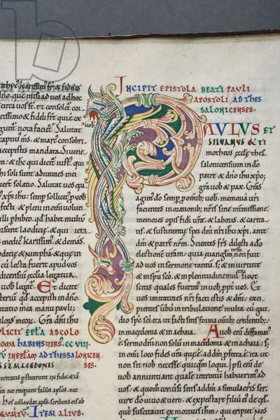 Decorated initial 'P' from I Thessalonians in the Carilef Bible (vellum)