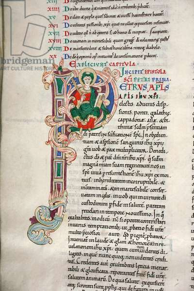 Decorated and inhabited initial 'P' depicting St Peter, from I Peter in the Carilef Bible (vellum)
