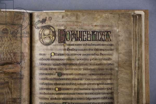 Decorated letters, from the Durham Gospels, c.700 (vellum)
