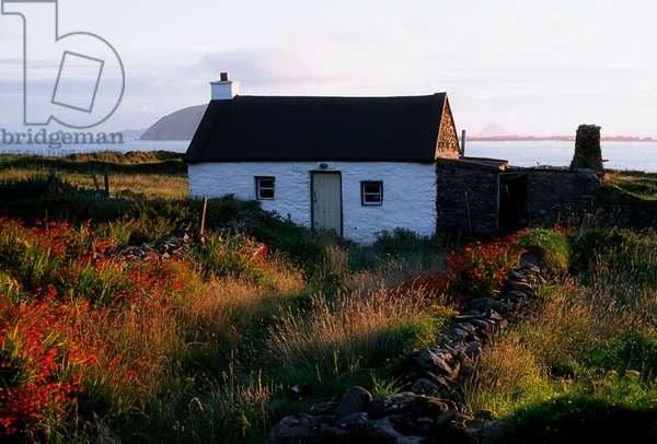 Cottage, Near Dunquin, Dingle Peninsula, Co Kerry, Ireland (photo)
