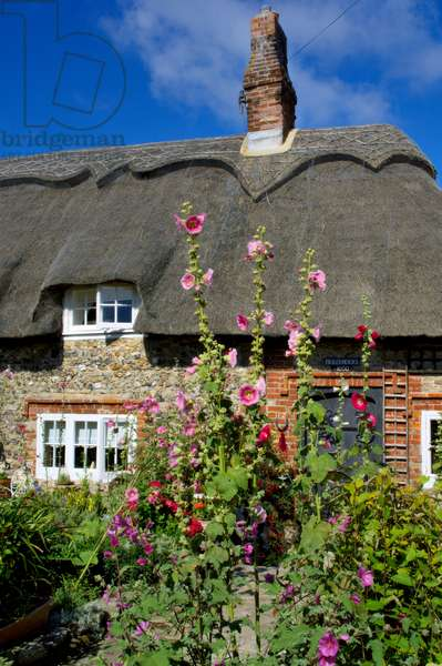 Europe, UK England, Sussex, Selsey, Thatched Cottage (photo)