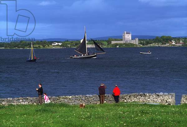Dunguaire Castle, Co Galway, Ireland; Traditional Galway Hookers Tracing During Kinvara Regatta (photo)