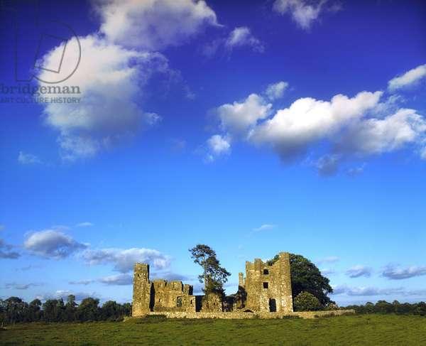 Bective Abbey, County Meath, Ireland (photo)