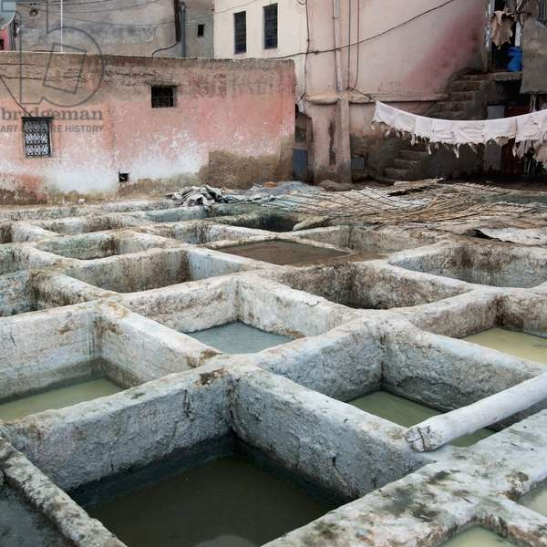 A Leather Tannery, Marrakesh, Marrakech-Tensift-El Haouz, Morocco (photo)