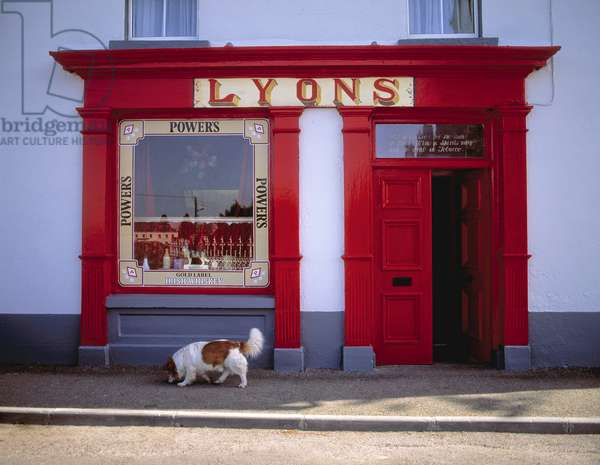 Dog In Front Of A Shop, Ardagh, County Longford, Ireland (photo)