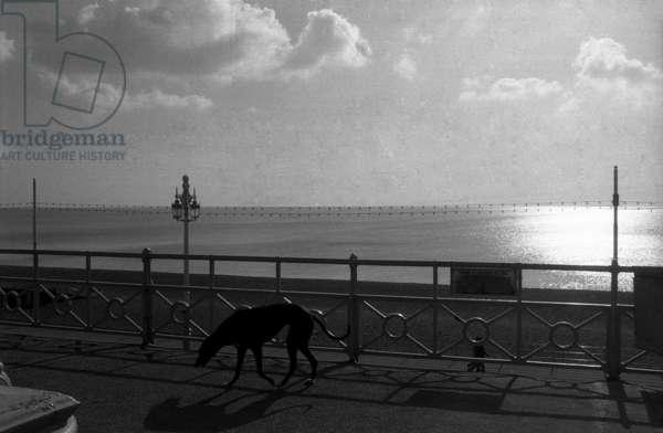 Sea Front, Brighton 2, 1975 (b/w photo)
