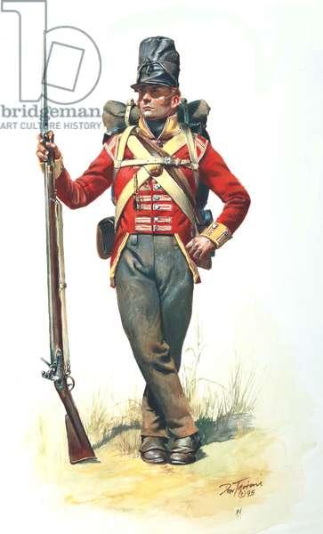 War of 1812, 104th British Regiment Of Foot, New Brunswick Regiment-1814, 1995 (w/c & gouache on paper)