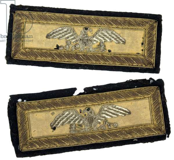 United States Cavalry Colonel's shoulder straps