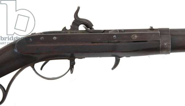 Hall's Breech Loading Percussion Rifle
