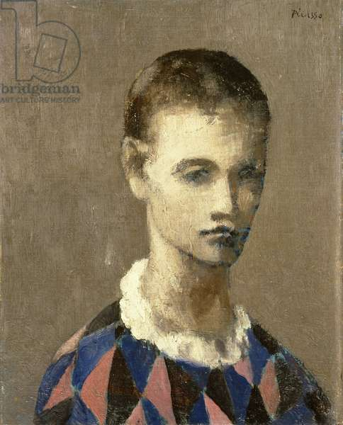 Head of a Harlequin, 1905 (oil on canvas)