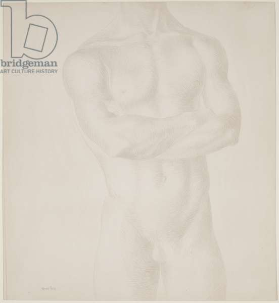 Male Torso, c.1955 (silverpoint on paper)