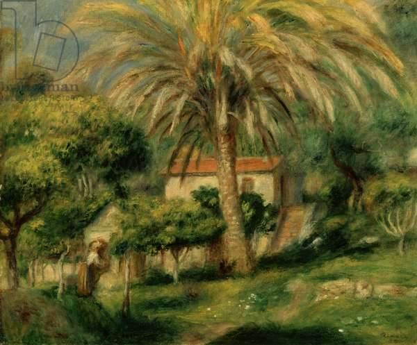 Palm Trees, 1902 (oil on canvas)