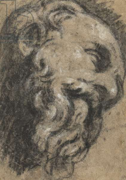 Study after Michelangelo's Saint Damian, c. between 1545 and 1550 (black chalk, heightened with white on beige paper)