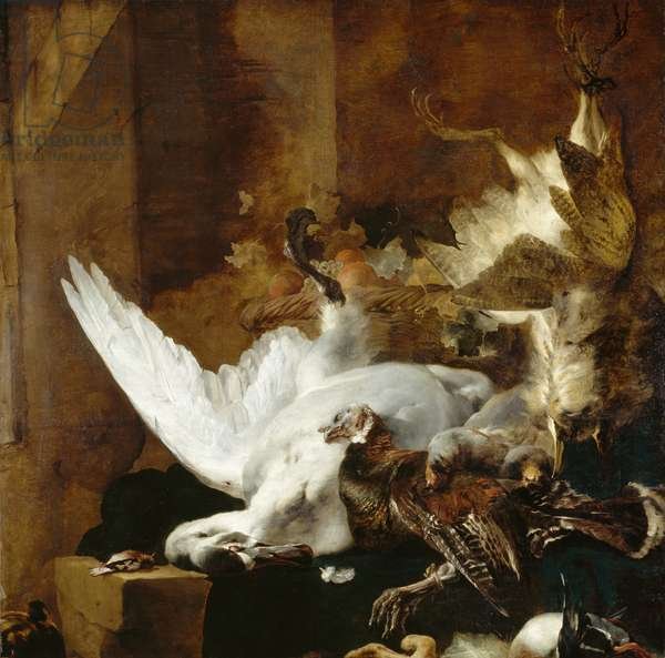 Still life with a dead swan, c.1651 (oil on canvas)