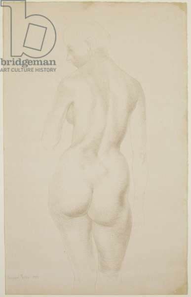 Nude, 1953 (silverpoint on paper)