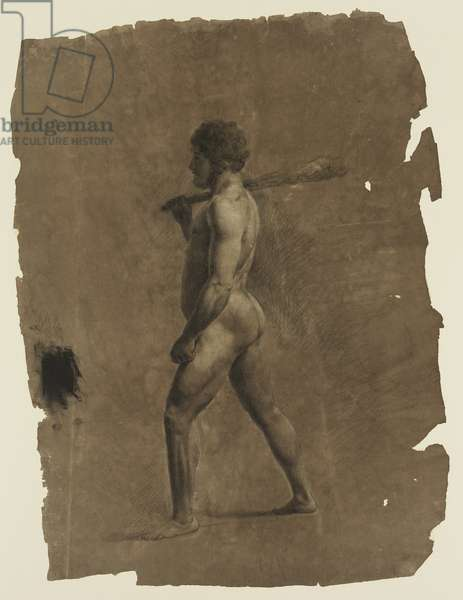 Standing Nude Male Figure (chalks on paper)