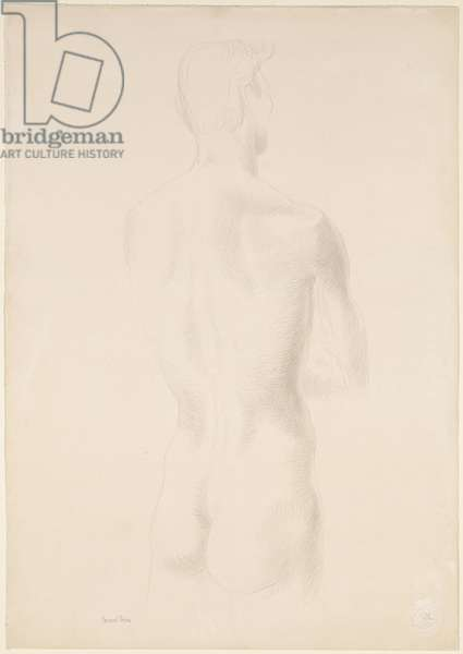 Male Nude, c.1955 (silverpoint on paper)
