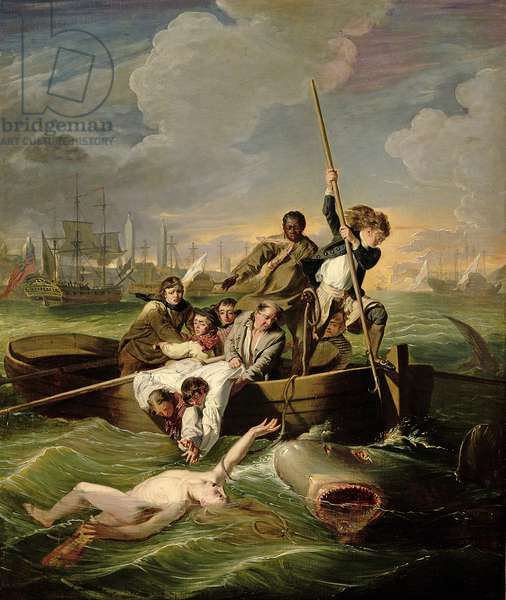 Watson and the Shark, 1782 (oil on canvas)
