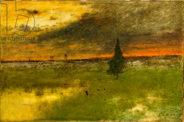 The Lonely Pine, 1893 (oil on canvas)