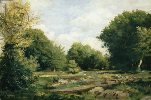Clearing in the Woods, 1865 (oil on canvas)