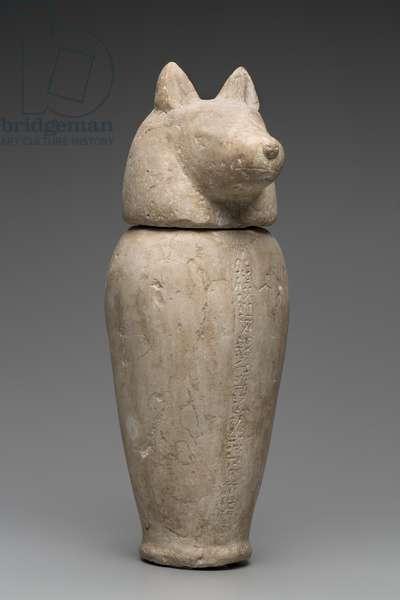 Canopic Jar with Jackal's Head (limestone)