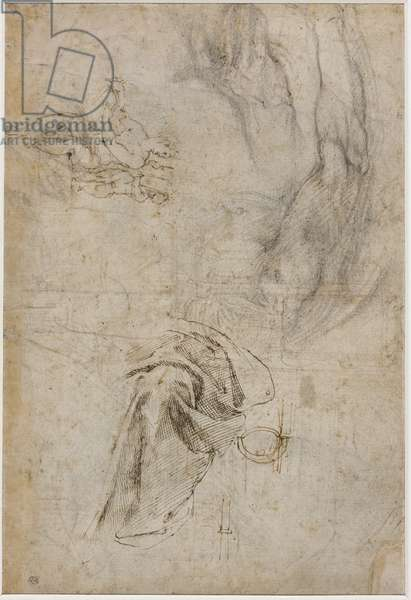 Scheme for the decoration of the ceiling of the Sistine Chapel, c.1508 (pen & brown ink and charcoal on cream laid paper)