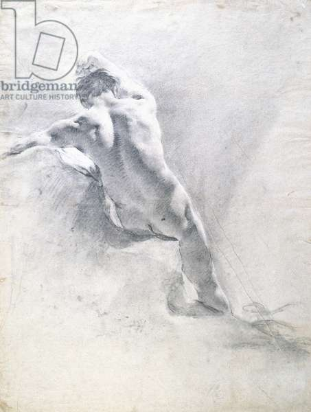 Study of a male nude, c.1715 (black chalk heightened with white on paper)