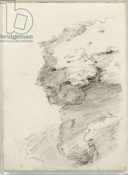 Untitled (detail of a cliff with foliage) 1831 (pencil on paper)