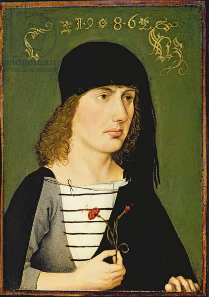 A Young Man, 1486 (oil on panel)