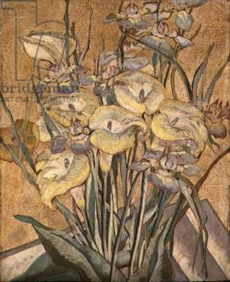 Irises and Calla Lilies, c.1890-1905 (oil on panel)