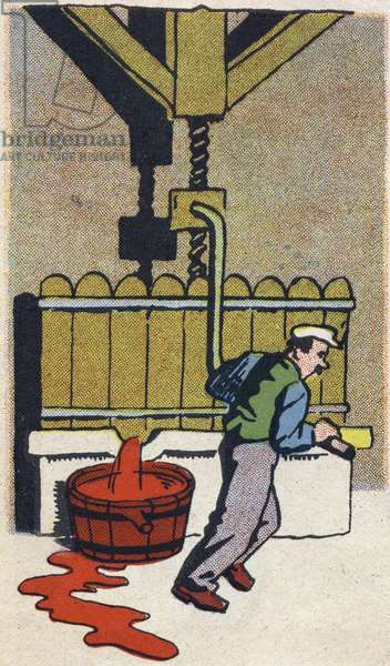 """The winemaker makes the wine. Engraving in """""""" ABC des metiers"""""""""""". Agence Gutenberg editions, Lyon, 1945. Author and illustrator unknown. 24 pages. Dimensions: 27x19cm. Private Collection"""