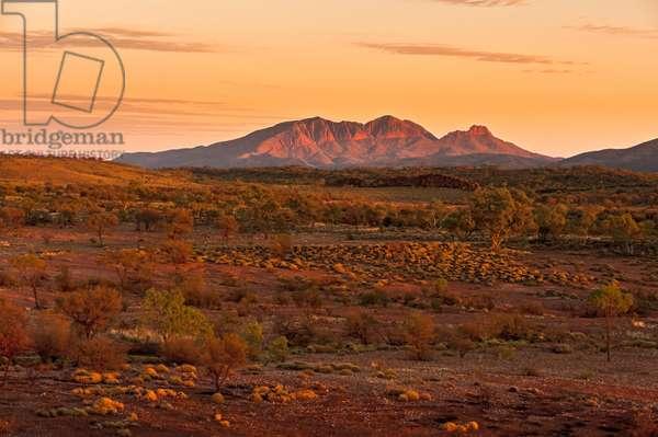 Mount Sonder or Rwetyepme, West MacDonnell Ranges at sunrise, Northern Territory, Australia (photo)