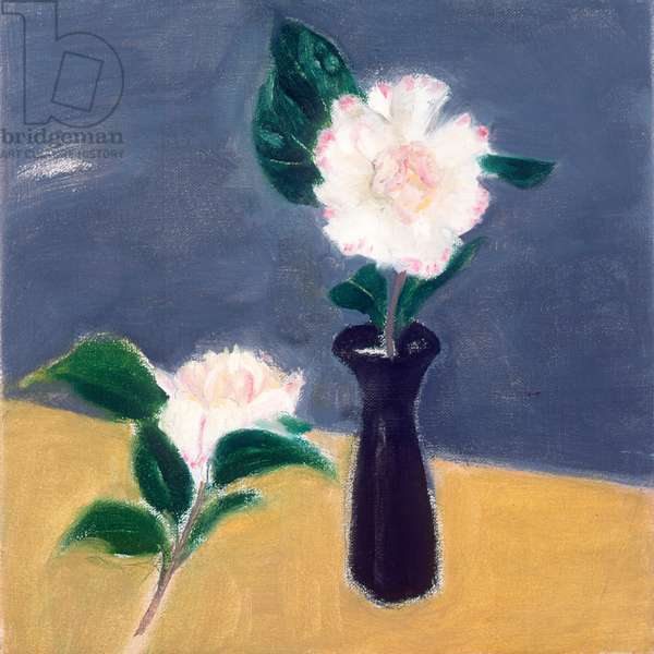 Camellia, 2004 (oil on canvas)