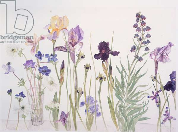 Mixed Flowers, 2004 (w/c on paper)