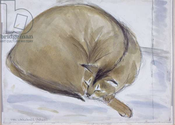 Abyssinian Cat Asleep (w/c on paper)