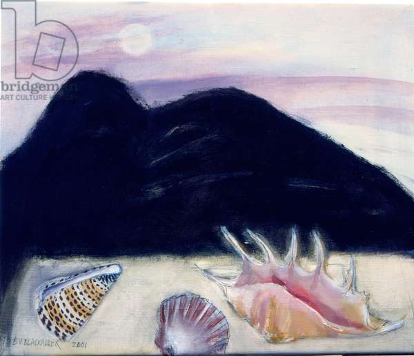 Shells, Arthur's Seat and Moon, 2001 (oil on canvas)