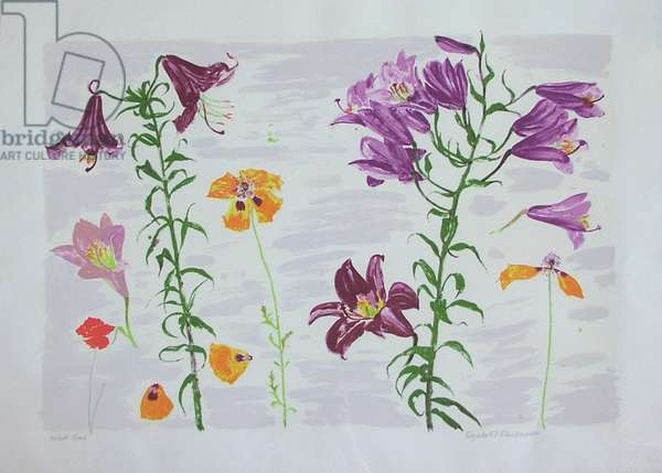 Lilies and Poppies (screenprint)