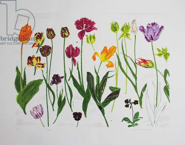 Tulips, 1998 (screenprint)