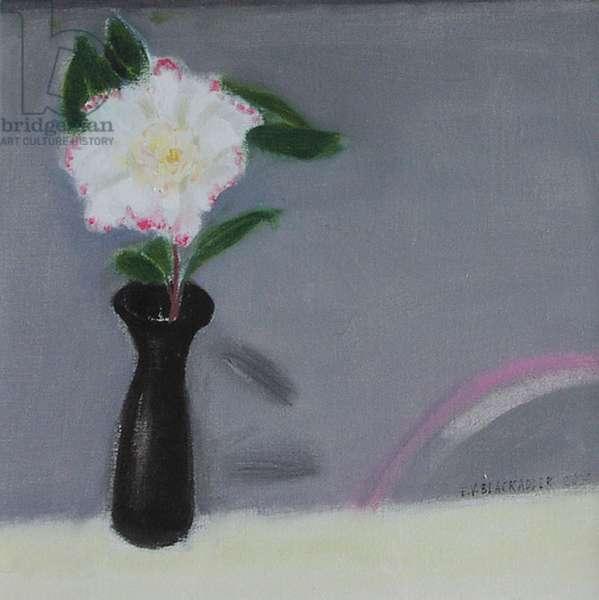 Single Camellia, 2004 (oil on canvas)