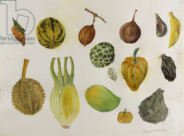 Fennel and Friends (w/c on paper)