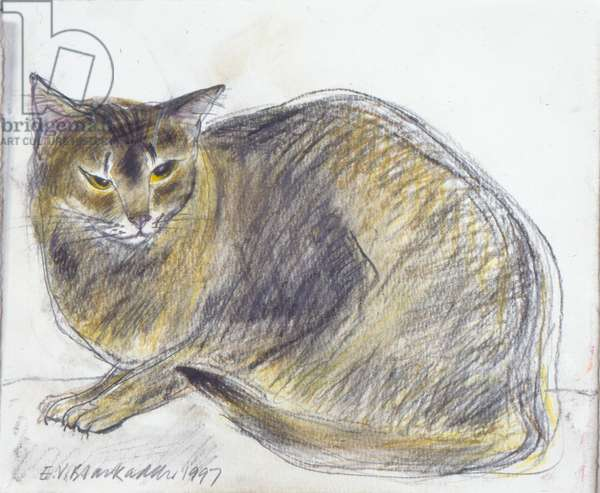 Little Abyssinian Cat, 1997 (pastel on paper)