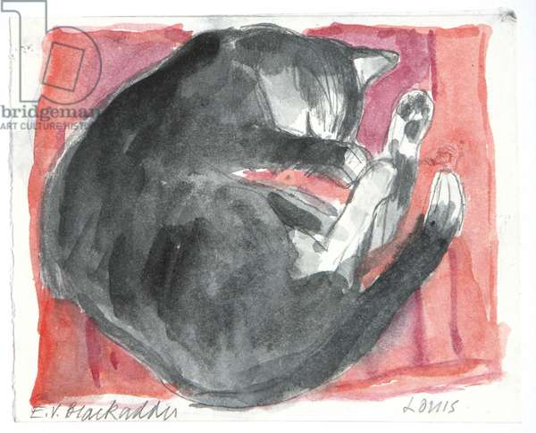 Louis Sleeping on a Silk Cushion, 2008 (pencil & w/c on paper)